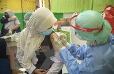 Indonesia đặt mục tiêu tiêm vaccine cho 208 triệu dân để đạt miễn dịch