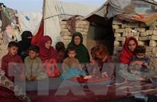LHQ hối thúc các nước láng giềng Afghanistan mở cửa biên giới