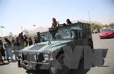 Chính phủ Đức thông báo đình chỉ viện trợ kinh tế cho Afghanistan