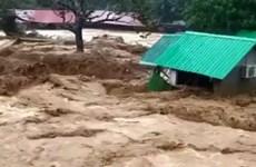 Lũ quét ở vùng núi Malaysia khiến 7 người thiệt mạng và mất tích