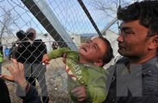 Hy Lạp lo sợ tái diễn cuộc khủng hoảng di cư như năm 2015