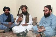 EU: Taliban tiếp quản Afghanistan là sự kiện lớn nhất từ sau vụ Crimea