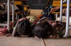 Số nạn nhân trong vụ tấn công khủng bố tại Burkina Faso tăng mạnh
