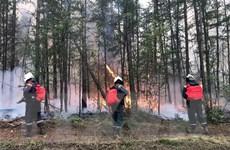 Cháy rừng nghiêm trọng tại Nga lan rộng đến vùng miền Trung