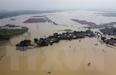 Chống biến đổi khí hậu sẽ giúp Đông Nam Á tạo ra 12.500 tỷ USD