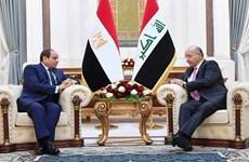 Ai Cập bác bỏ mọi sự can thiệp của nước ngoài vào các vấn đề của Iraq