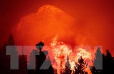 Mỹ: Các đám cháy rừng tại bang California đang diễn biến phức tạp