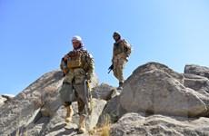 Afghanistan: Giao tranh tại thung lũng Panjshir gây thương vong