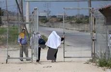 Qatar nối lại viện trợ ở Gaza qua cơ chế phối hợp với Palestine, LHQ