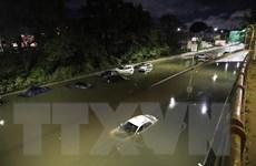 Mỹ điều tra gần 350 báo cáo về các sự cố tràn dầu do bão Ida