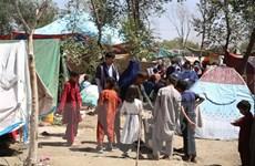 Tình hình Afghanistan: Taliban kêu gọi người dân ngừng biểu tình