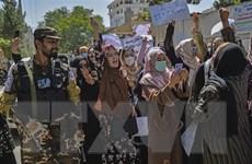 Tình hình Afghanistan: Taliban cấm mọi hình thức biểu tình không phép