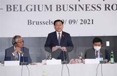Cơ hội để doanh nghiệp Việt-Bỉ chia sẻ những xu hướng đầu tư mới