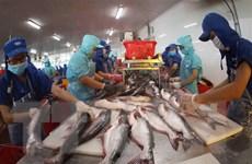 Quỹ VEIL: Nền kinh tế Việt Nam có khả năng phát triển mạnh