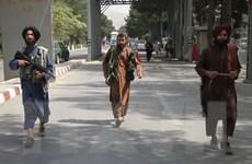 Liên hợp quốc kêu gọi cộng đồng quốc tế duy trì đối thoại với Taliban