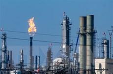 Các tập đoàn năng lượng thống nhất tiêu chuẩn về trung hòa carbon