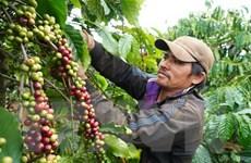 Australia-Việt Nam thúc đẩy hợp tác thương mại thực phẩm hữu cơ