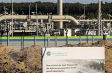 EC có thể điều tra vai trò của Gazprom liên quan việc giá khí đốt tăng