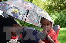 Liên hợp quốc quan ngại về việc Mỹ trục xuất người Haiti