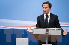 Hà Lan đạt bước đột phá sau 6 tháng đàm phán thành lập liên minh