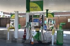 Quan chức Anh: Tình trạng thiếu hụt nhiên liệu sẽ sớm lắng dịu