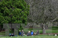 Dịch bệnh ở Australia có tín hiệu giảm, New Zealand gia hạn phong tỏa