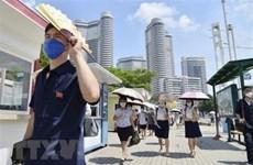 Triều Tiên đẩy nhanh tiến độ xây khu chung cư mới ở Bình Nhưỡng