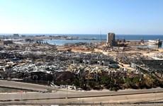 Liban rơi vào khủng hoảng chính trị liên quan điều tra vụ nổ ở Beirut