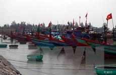 Các phương tiện, người lao động ở Thanh Hóa đã vào tránh trú an toàn
