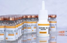 COVID-19: Vaccine dạng xông của CanSino được đánh giá có hiệu quả
