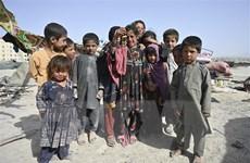Nga kêu gọi NATO chia sẻ trách nhiệm khôi phục Afghanistan