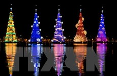 [Photo] Cây thông Noel khổng lồ thắp sáng nhờ 3,1 triệu bóng đèn LED