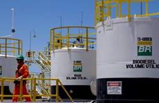 Petrobras dự kiến thanh lý tài sản trong hai năm tới để trả nợ