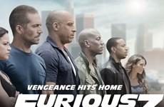 """""""Furious 7"""" kỳ vọng đạt hơn 110 triệu USD sau khi công chiếu"""
