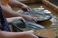 Các nhà khoa học muốn khai thác vàng từ chất thải của người