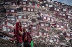 Ghé thăm khu định cư của người theo đạo Phật lớn nhất thế giới