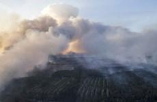 Ukraine khoanh vùng cháy rừng gần nhà máy điện hạt nhân Chernobyl