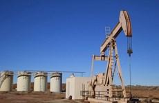 Giá dầu đi xuống trong khi dự trữ dầu thô ở Mỹ tiếp tục giảm
