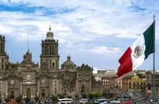 Mexico chính thức công bố kết quả của cuộc bầu cử giữa kỳ