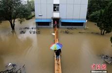 [Photo] Trường ngập lũ, sinh viên Trung Quốc bắc cầu tạm đi học