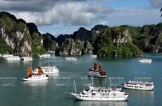 Đắm mình trên du thuyền để khám phá kỳ quan Vịnh Hạ Long