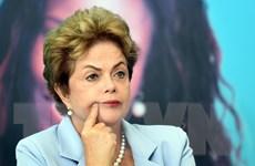 """Tổng thống Brazil kêu gọi các nghị sỹ ủng hộ """"thắt lưng buộc bụng"""""""