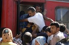 Macedonia đóng cửa biên giới để chặn người di cư trái phép