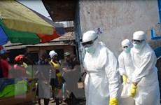 WHO tái xác nhận Liberia đã hết virus Ebola lây nhiễm trong cộng đồng