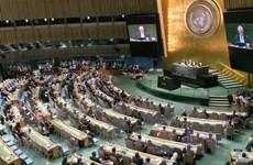 Nam Phi sẽ đề nghị thúc đẩy tiến trình cải tổ Liên hợp quốc