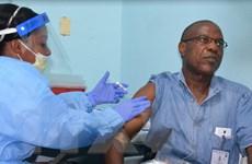 Sierra Leone bắt đầu 42 ngày đếm ngược để công bố hết dịch Ebola