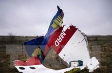 Almaz-Antey đòi EU bồi thường uy tín kinh doanh trong vụ MH17