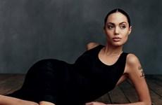 [Photo] Chứng kiến sự thay đổi của Angelina Jolie trên Tạp chí Vogue