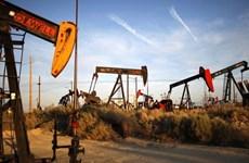 Giá dầu châu Á đi ngang trong khi chờ đợi kết quả của Fed