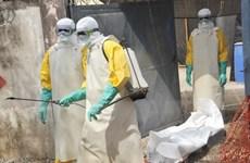 Guinea xác nhận thêm 3 trường hợp trong một gia đình nhiễm Ebola